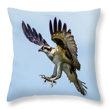 Suspended Osprey Throw Pillow