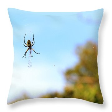 Suspended Spider Throw Pillow