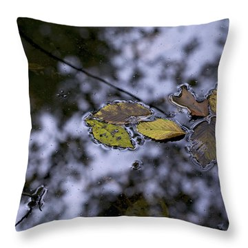 Suspension Throw Pillow by Jane Eleanor Nicholas