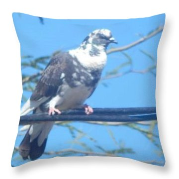 Suspicious Bird Throw Pillow
