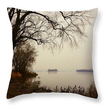 Susquehanna River Near Veterans Memorial Bridge Throw Pillow