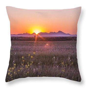 Sutter Buttes Throw Pillow