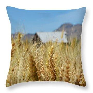 Sutter Buttes Wheat  Throw Pillow