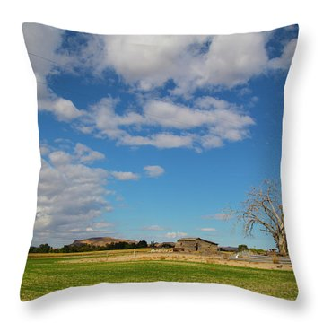 Sw Idaho Scenery Throw Pillow