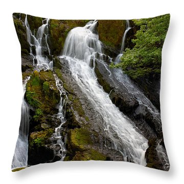 Swallow Falls Throw Pillow