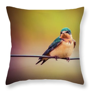Throw Pillow featuring the photograph Swallow by Mary Hone