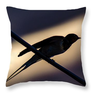 Swallow Speed Throw Pillow