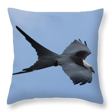 Swallow-tailed Kite #1 Throw Pillow by Paul Rebmann