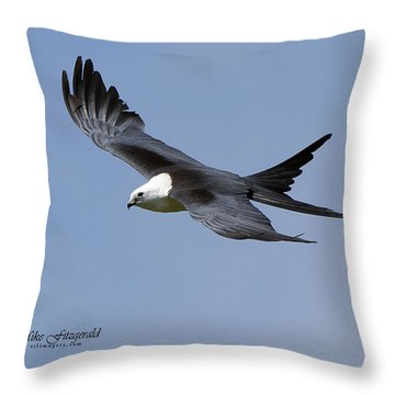 Swallow-tailed Kite Throw Pillow