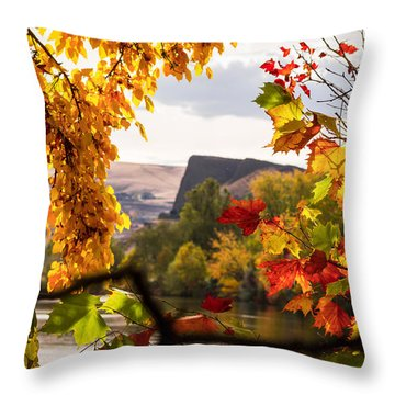Swallow's Nest In The Fall Throw Pillow by Brad Stinson