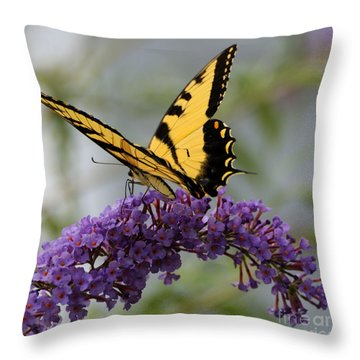 Swallowtail 2 Throw Pillow