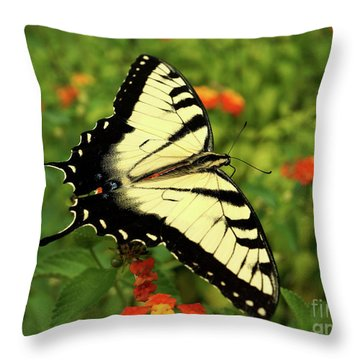Swallowtail Among Lantana Throw Pillow by Sue Melvin