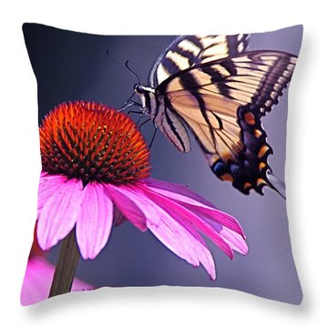 Throw Pillow featuring the photograph Swallowtail And Coneflower by Byron Varvarigos