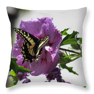 Swallowtail Butterfly Throw Pillow by Bonnie Muir