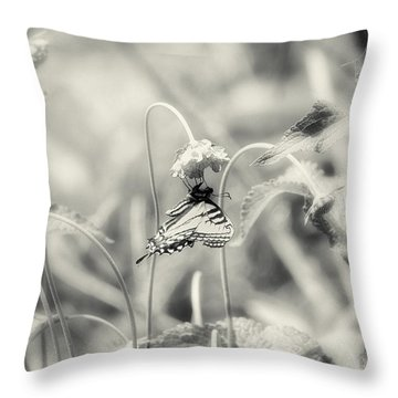 Throw Pillow featuring the photograph Swallowtail In Black And White by Lila Fisher-Wenzel