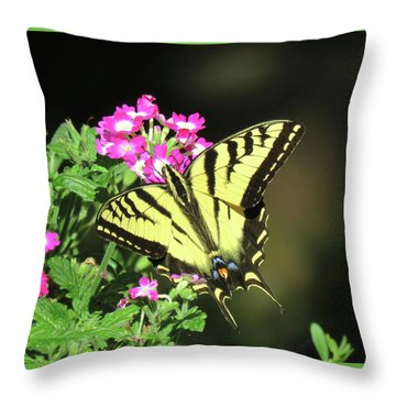 Swallowtail In The Garden 1 - Visions Of Spring Throw Pillow by Brooks Garten Hauschild
