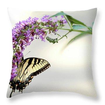 Swallowtail On Purple Flower Throw Pillow