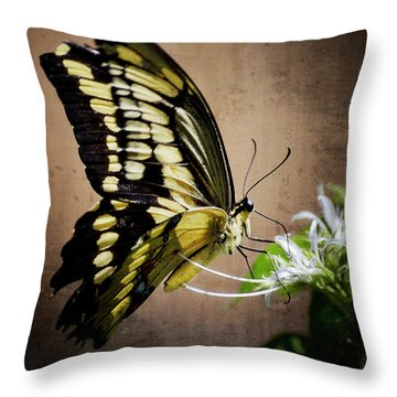Swallowtail Throw Pillow by Saija  Lehtonen