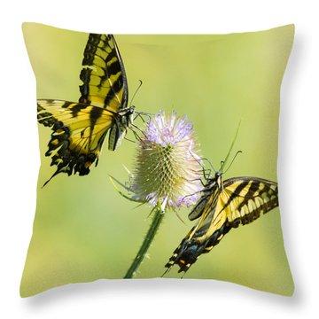 Swallowtails On Thistle  Throw Pillow