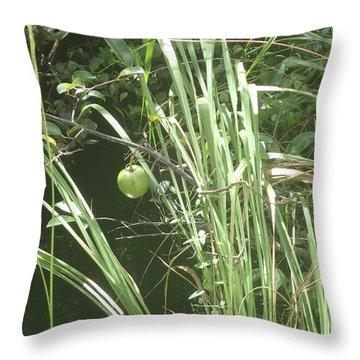 Swamp Apple Throw Pillow