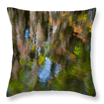 Swamp Colors Throw Pillow by Carolyn Dalessandro