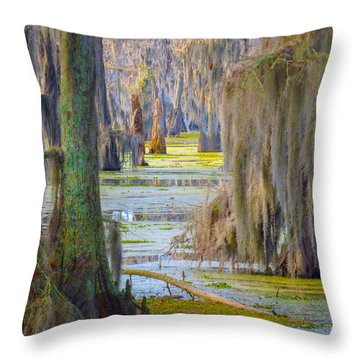 Swamp Curtains In February Throw Pillow
