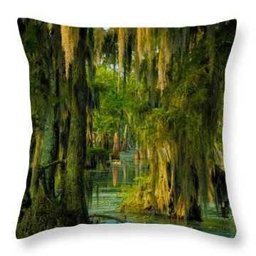 Swamp Curtains In May Throw Pillow