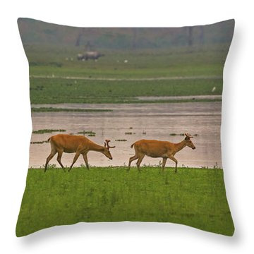 Swamp Deers Throw Pillow