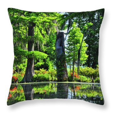 Swamp In Bloom Signed Throw Pillow