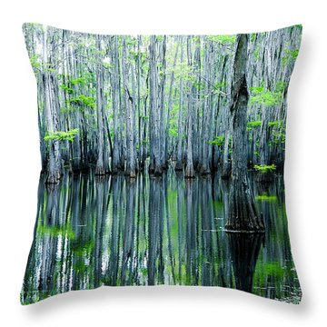 Swamp In Louisiana Throw Pillow by Ester  Rogers