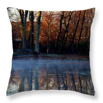 Swamp In Morning Throw Pillow