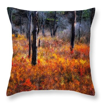 Swamp Music - A Late Autumn Impressionist Scenic Throw Pillow
