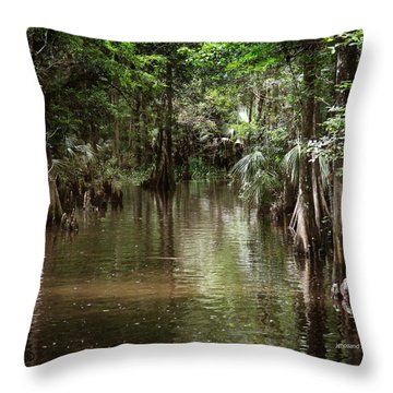 Swamp Road Throw Pillow