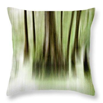 Swamp Throw Pillow by Scott Pellegrin