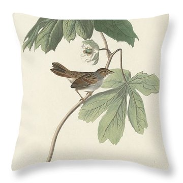 Swamp Sparrow Throw Pillow by Rob Dreyer