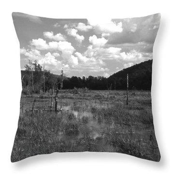 Swampoem Throw Pillow
