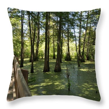 Swamps Throw Pillow by Helen Haw