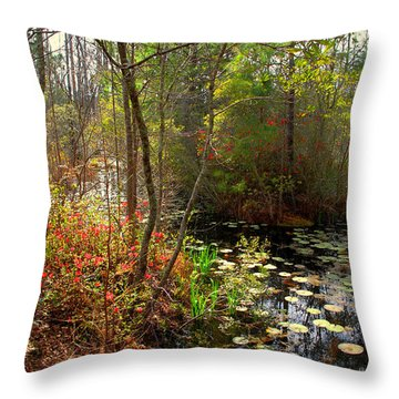 Swamps In Sc Throw Pillow by Susanne Van Hulst