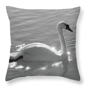 Swan Bathed In Light Throw Pillow