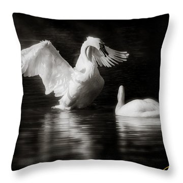 Swan Display Throw Pillow