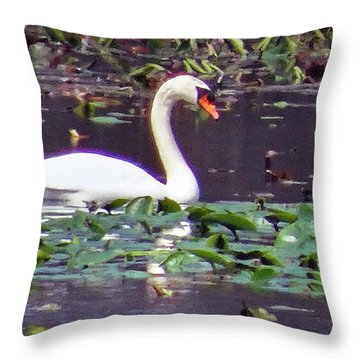Swan Enjoying Spring Throw Pillow by Mikki Cucuzzo