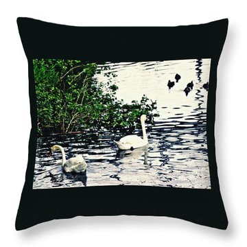 Throw Pillow featuring the photograph Swan Family On The Rhine 2 by Sarah Loft