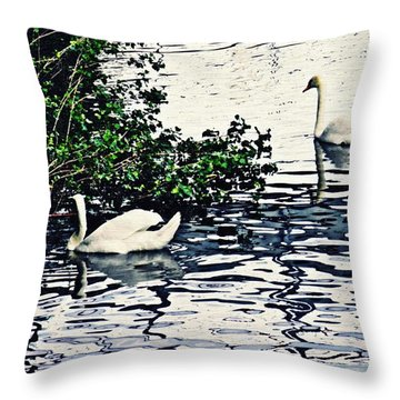 Throw Pillow featuring the photograph Swan Family On The Rhine 3 by Sarah Loft