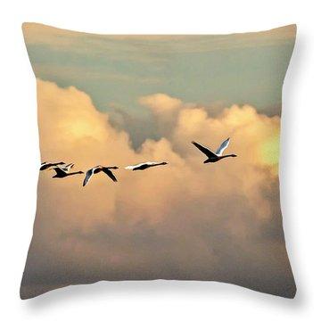 Swan Heaven Throw Pillow