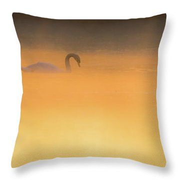 Swan In Aurora's Fiery Dawn Throw Pillow