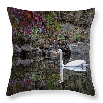 Swan In Autumn Reflections Throw Pillow