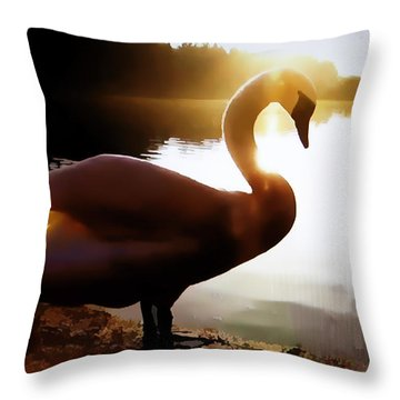 Swan In Evening Sun Throw Pillow by Linda Phelps