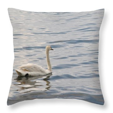 Swan In The Mirror Water Throw Pillow
