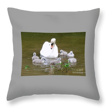 Swan Lake 1 Throw Pillow by Bill Holkham