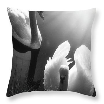 Swan Lake In Winter -  Kingsbury Nature Throw Pillow by John Edwards